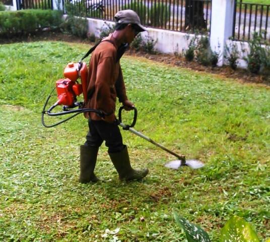 Tips Memilih Dan Merawat Mesin Potong Rumput Agar Awet